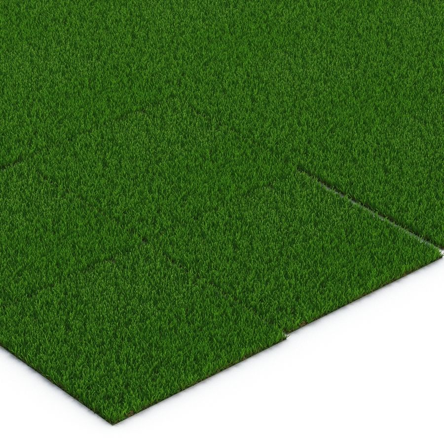 Zoysia Grass royalty-free 3d model - Preview no. 11