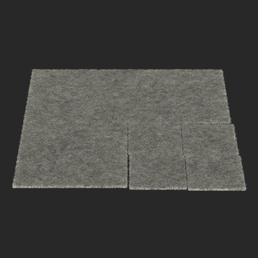 Zoysia Grass royalty-free 3d model - Preview no. 20