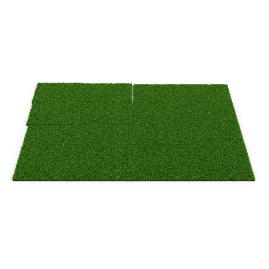 Zoysia Grass royalty-free 3d model - Preview no. 10