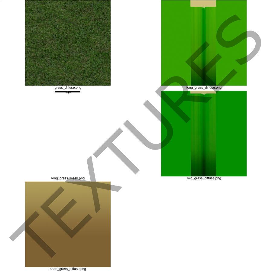 Zoysia Grass royalty-free 3d model - Preview no. 17