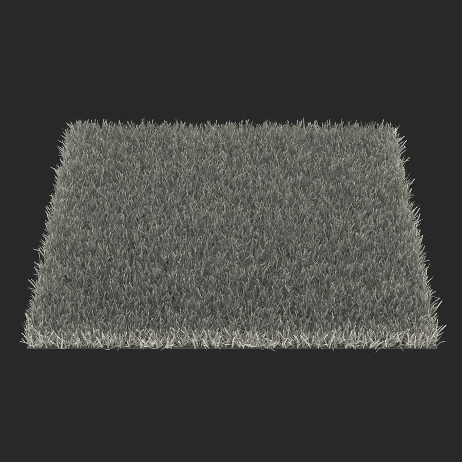 Zoysia Grass royalty-free 3d model - Preview no. 19