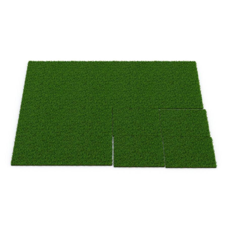 Zoysia Grass royalty-free 3d model - Preview no. 9
