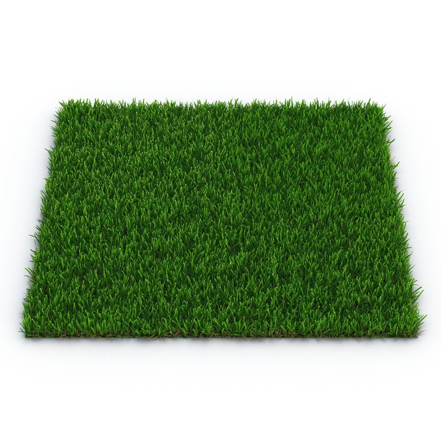 Zoysia Grass royalty-free 3d model - Preview no. 2
