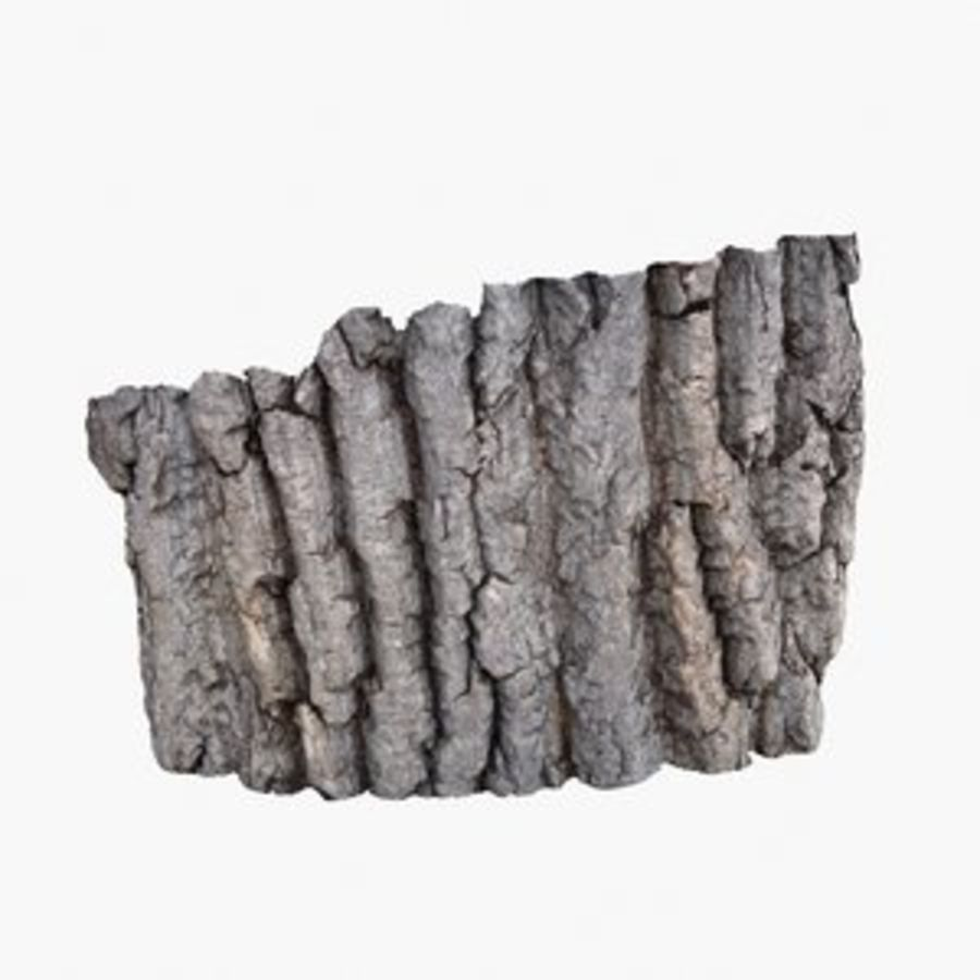 Bark 3 - Oak royalty-free 3d model - Preview no. 1