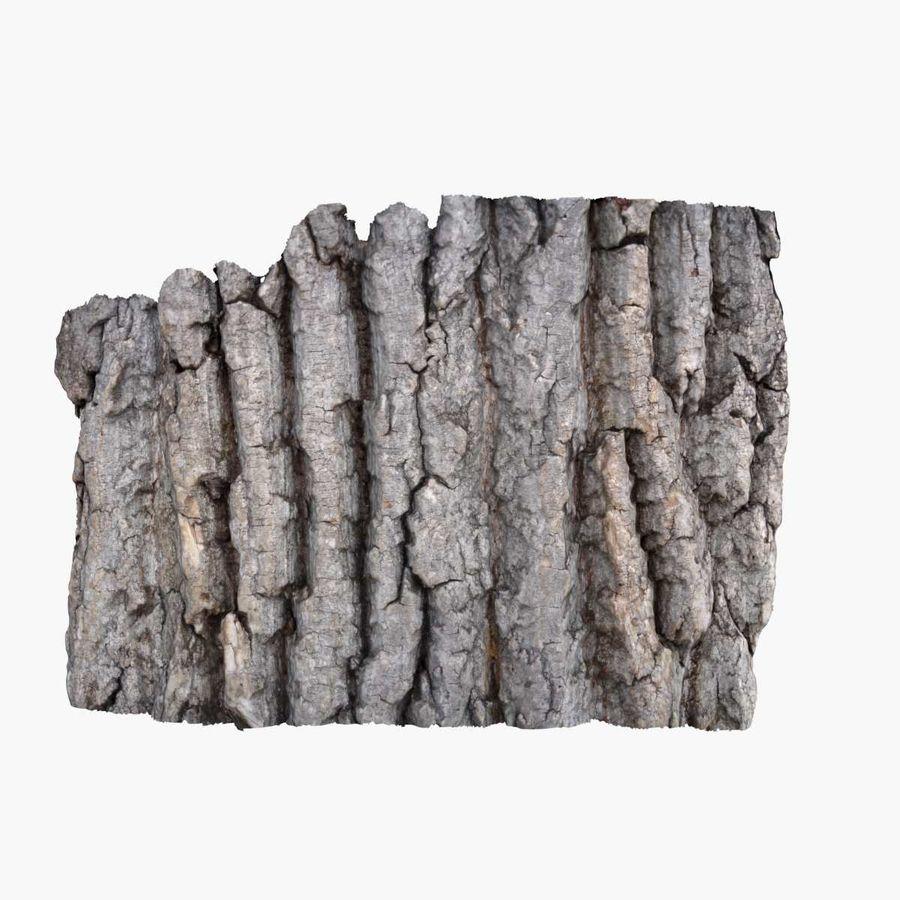 Bark 3 - Oak royalty-free 3d model - Preview no. 2