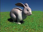 Кролик кролик 3d model