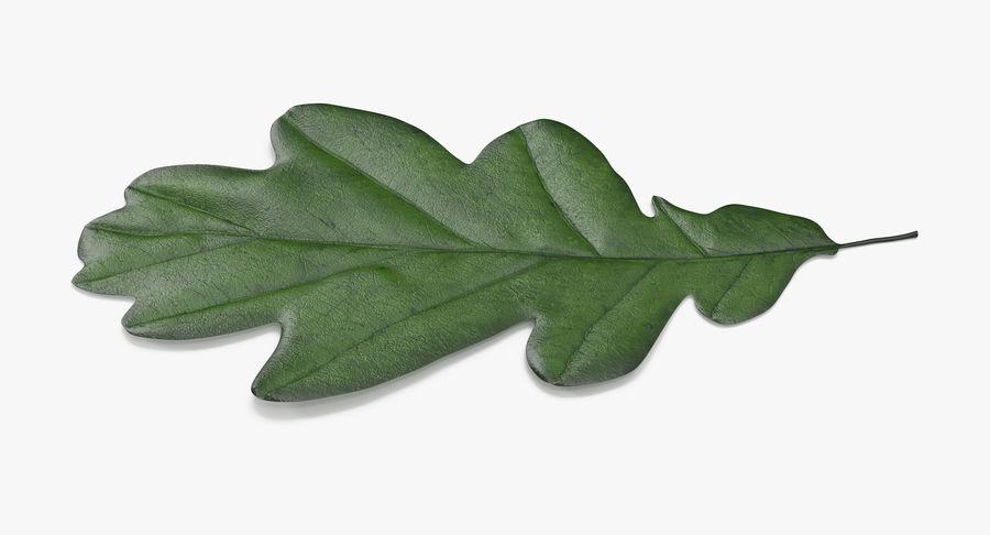 Foglia di quercia 02 verde royalty-free 3d model - Preview no. 7