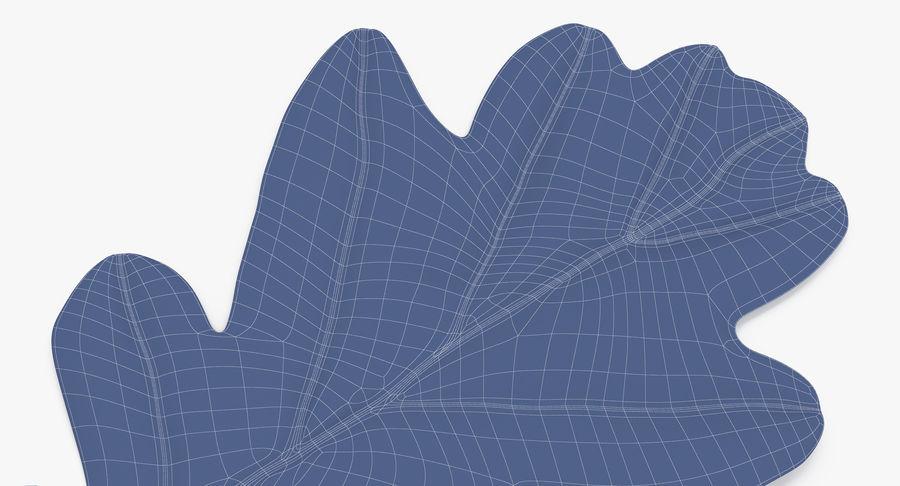 Foglia di quercia 02 verde royalty-free 3d model - Preview no. 20
