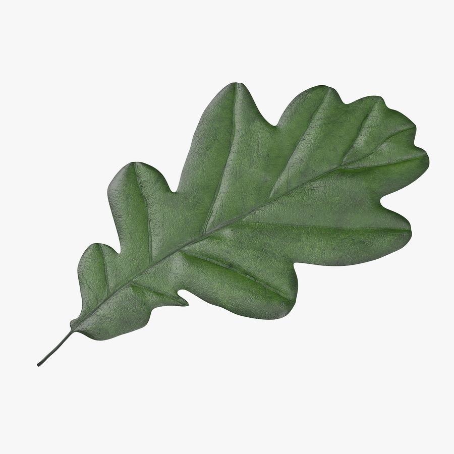Foglia di quercia 02 verde royalty-free 3d model - Preview no. 1