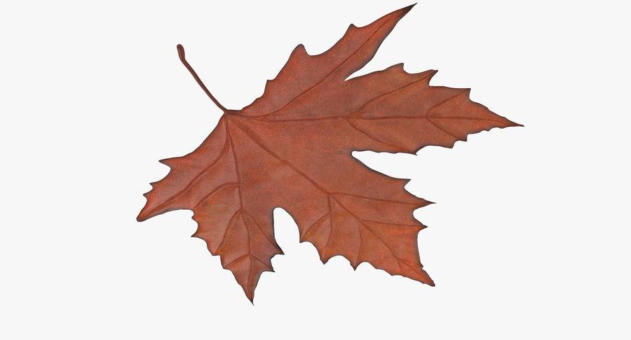 Maple Leaf 02 Orange royalty-free 3d model - Preview no. 6