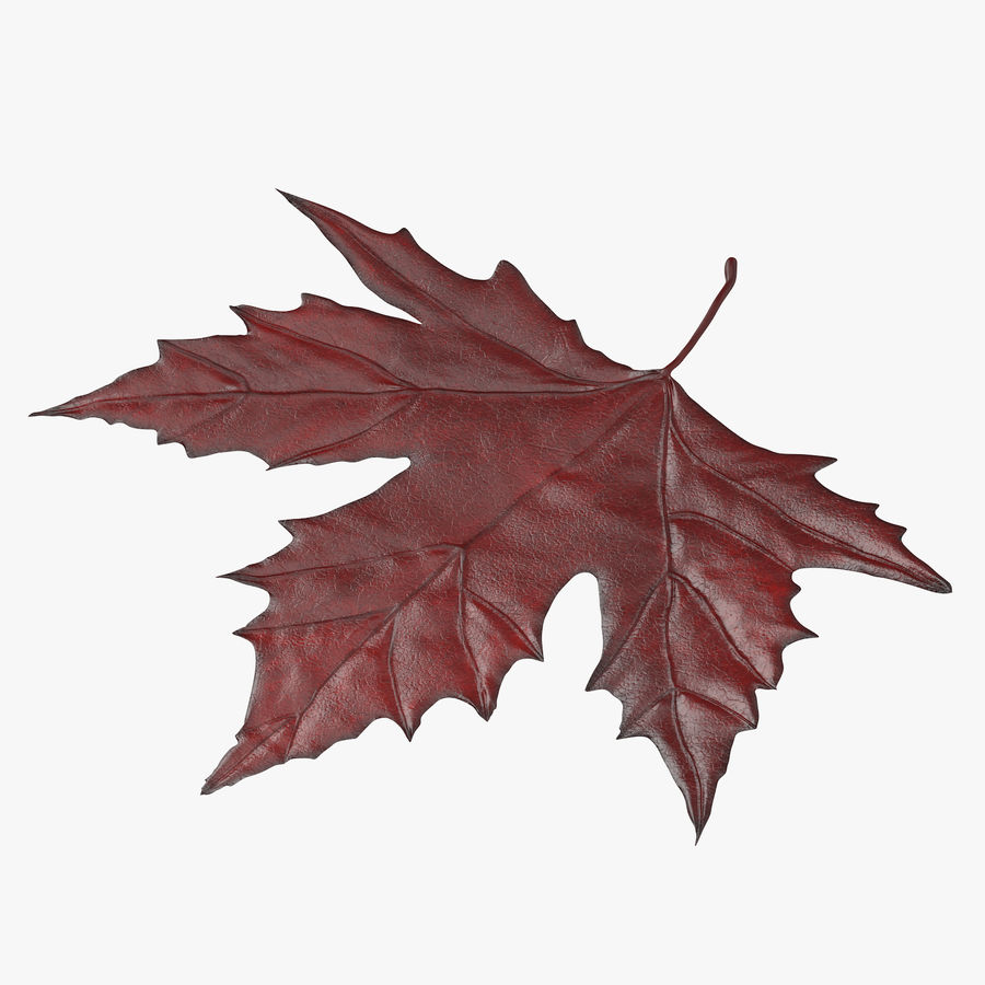 Maple Leaf 02 Red royalty-free 3d model - Preview no. 1