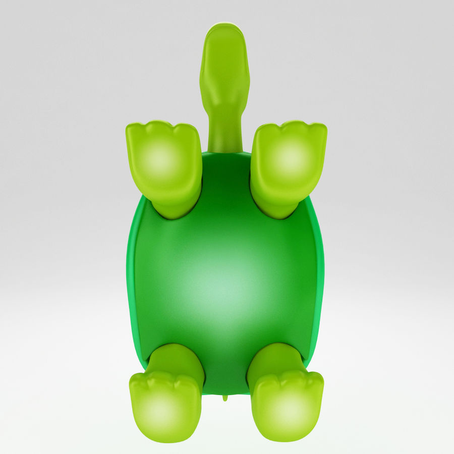 Young Turtle tortoise royalty-free 3d model - Preview no. 5