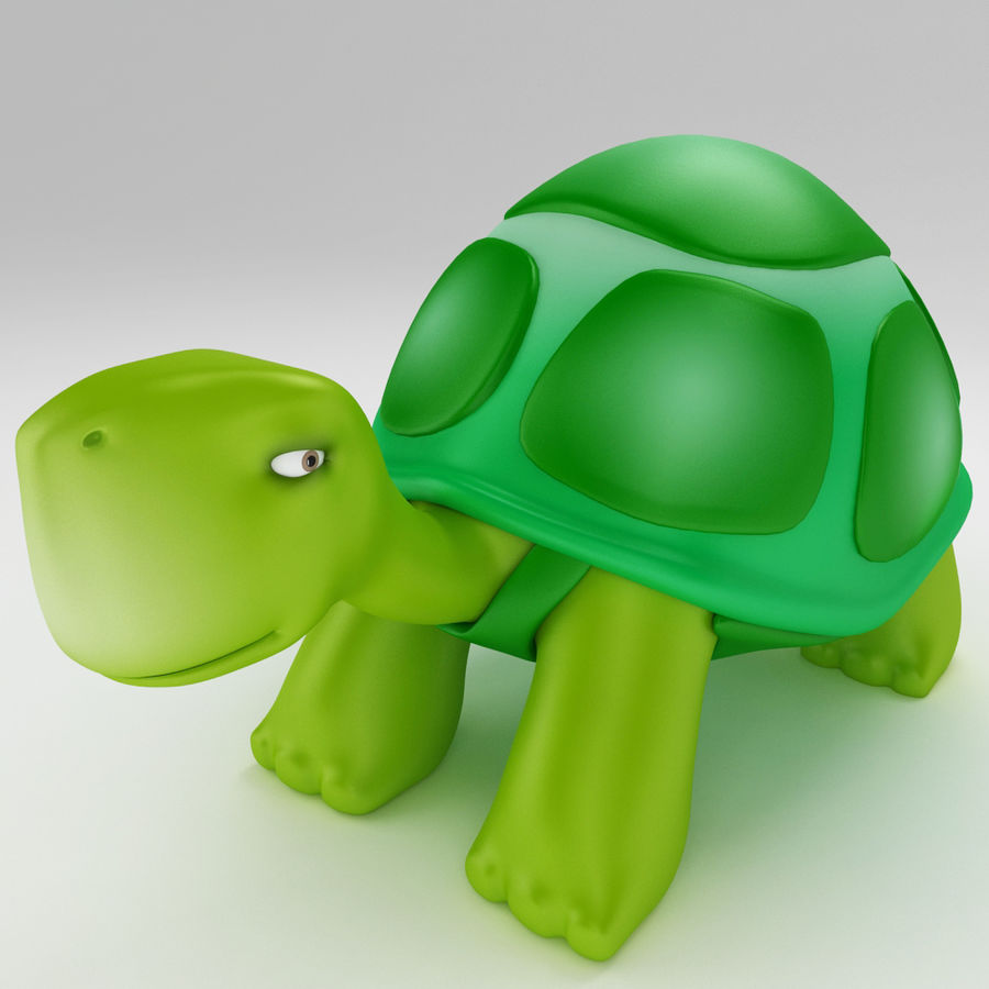 Young Turtle tortoise royalty-free 3d model - Preview no. 1