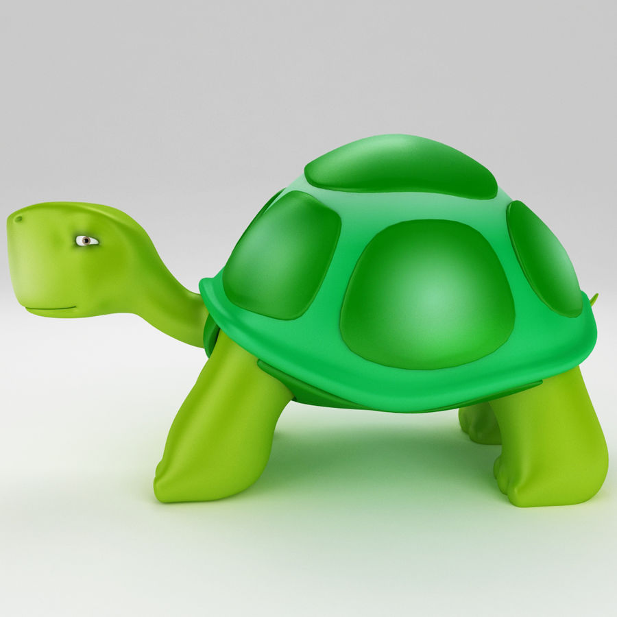 Young Turtle tortoise royalty-free 3d model - Preview no. 2