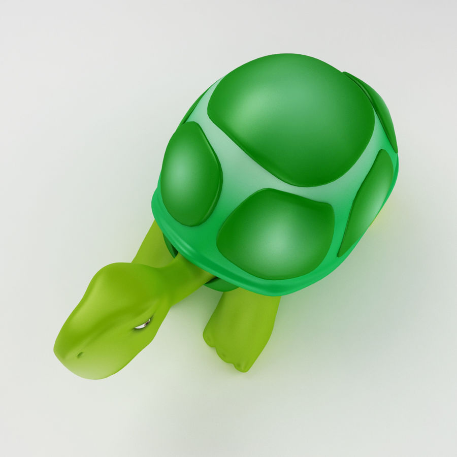 Young Turtle tortoise royalty-free 3d model - Preview no. 4