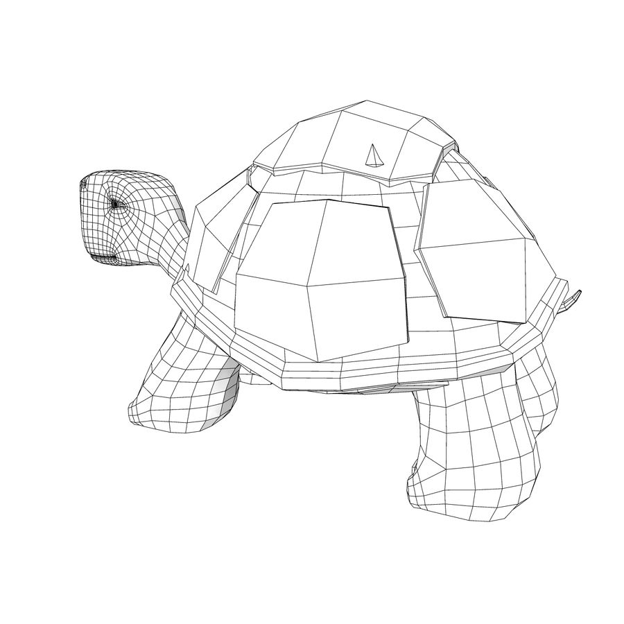 Young Turtle tortoise royalty-free 3d model - Preview no. 7