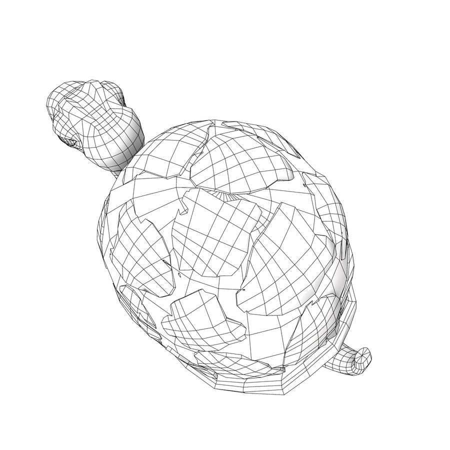 Turtle Tortoise old royalty-free 3d model - Preview no. 8
