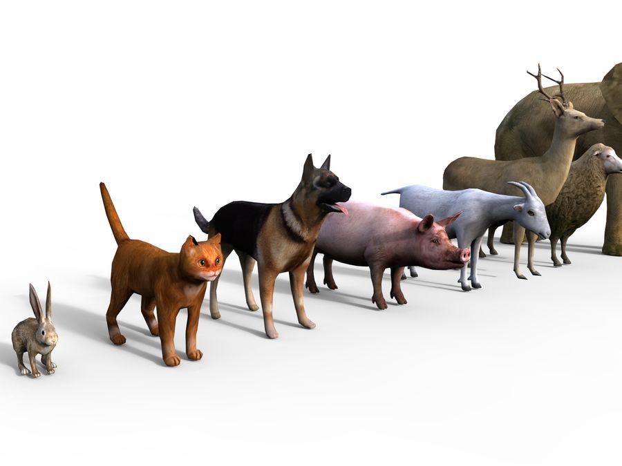 Kolekcja zwierząt royalty-free 3d model - Preview no. 12