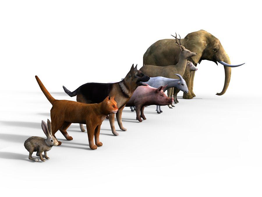 Kolekcja zwierząt royalty-free 3d model - Preview no. 8