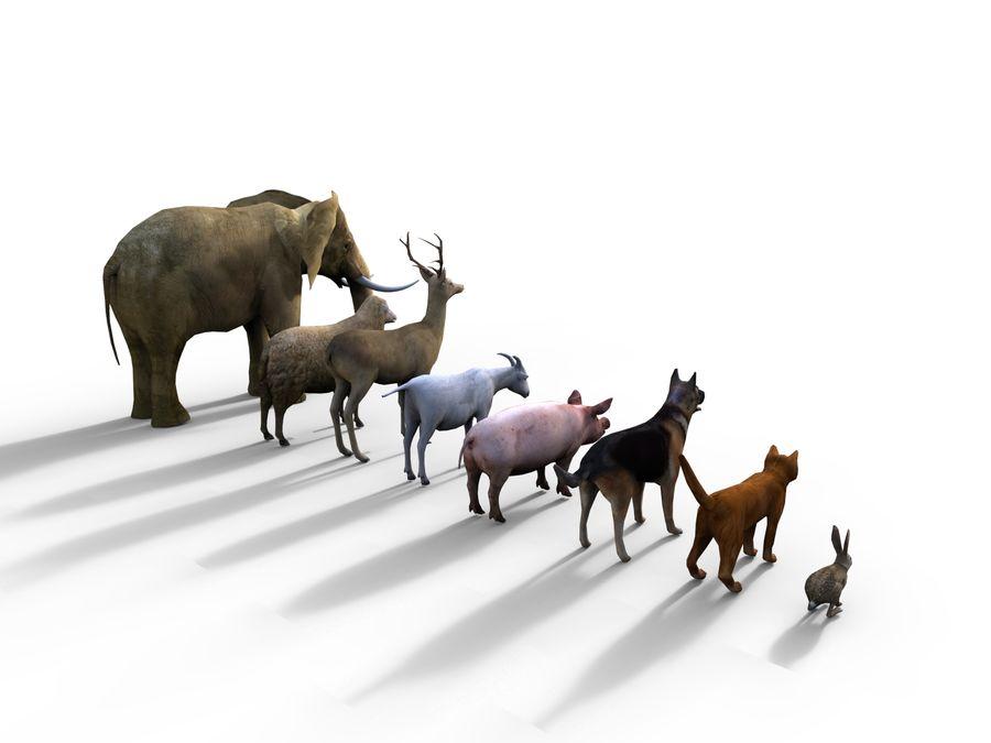 Kolekcja zwierząt royalty-free 3d model - Preview no. 6