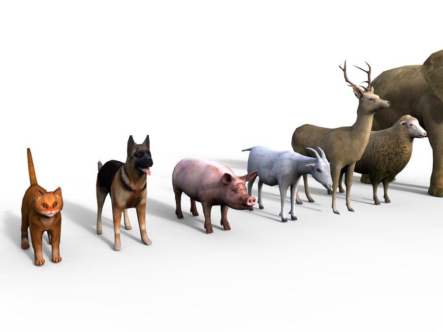 Kolekcja zwierząt royalty-free 3d model - Preview no. 11