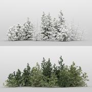 10+10 Forest Bush 3d model