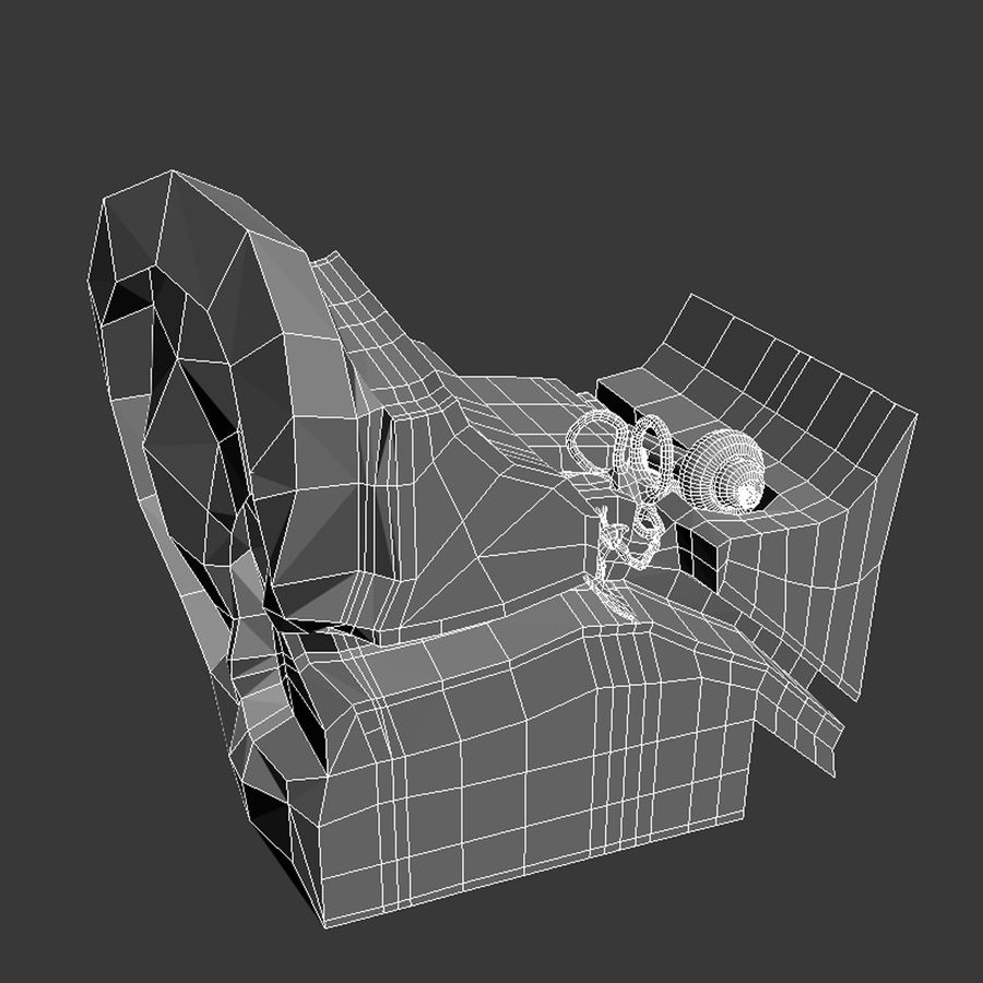 oor anatomie royalty-free 3d model - Preview no. 8