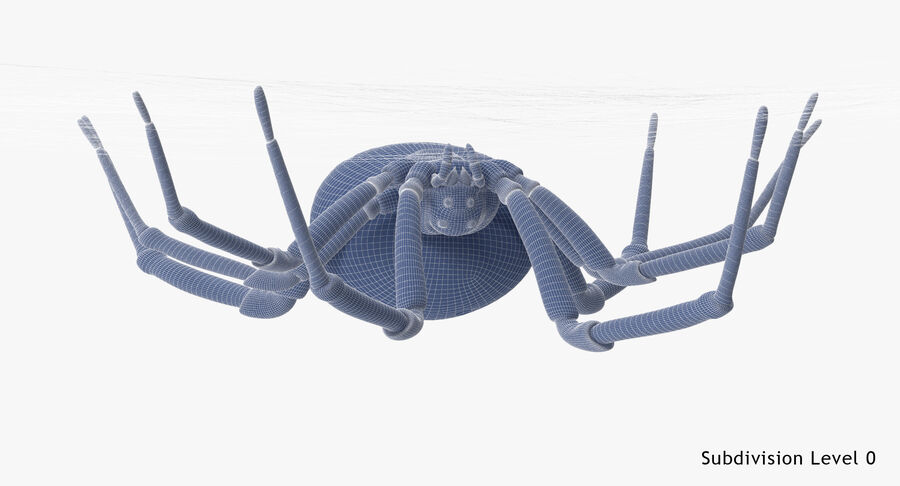 Black Widow - Hanging royalty-free 3d model - Preview no. 21