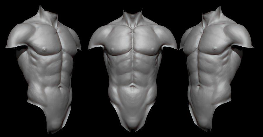 Der männliche Körper royalty-free 3d model - Preview no. 6