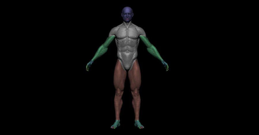 Der männliche Körper royalty-free 3d model - Preview no. 9