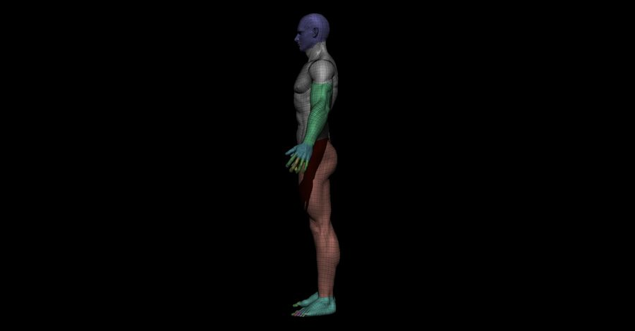 Der männliche Körper royalty-free 3d model - Preview no. 10