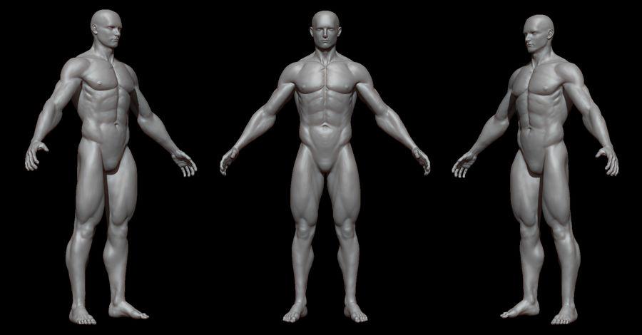Der männliche Körper royalty-free 3d model - Preview no. 1