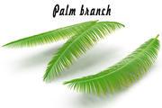 Ramo de palmeira 3d model