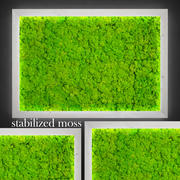 Fytowall moss LX 3d model