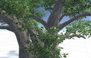 Conjunto de Árvore 3d model