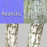Kora drzewa 7 3d model