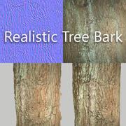 Tree Bark 5 3d model