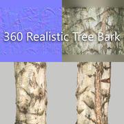 360 Tree Bark 6 3d model