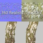 360 Tree Bark 4 3d model