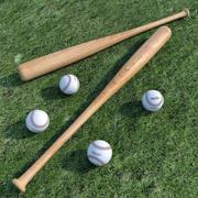 야구 방망이 및 공 3d model