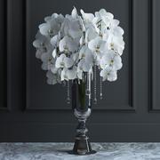 Orchid bouquet 3d model