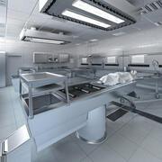 Anatomi Otopsi Laboratuvarı 3d model