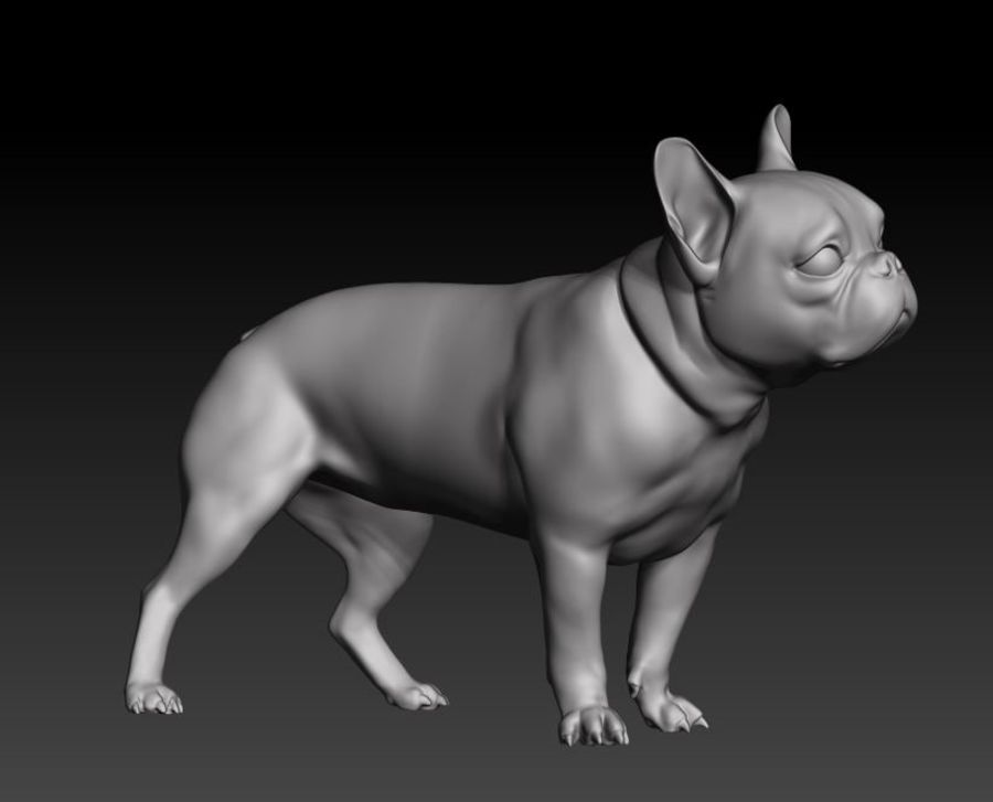 bulldog francese royalty-free 3d model - Preview no. 5