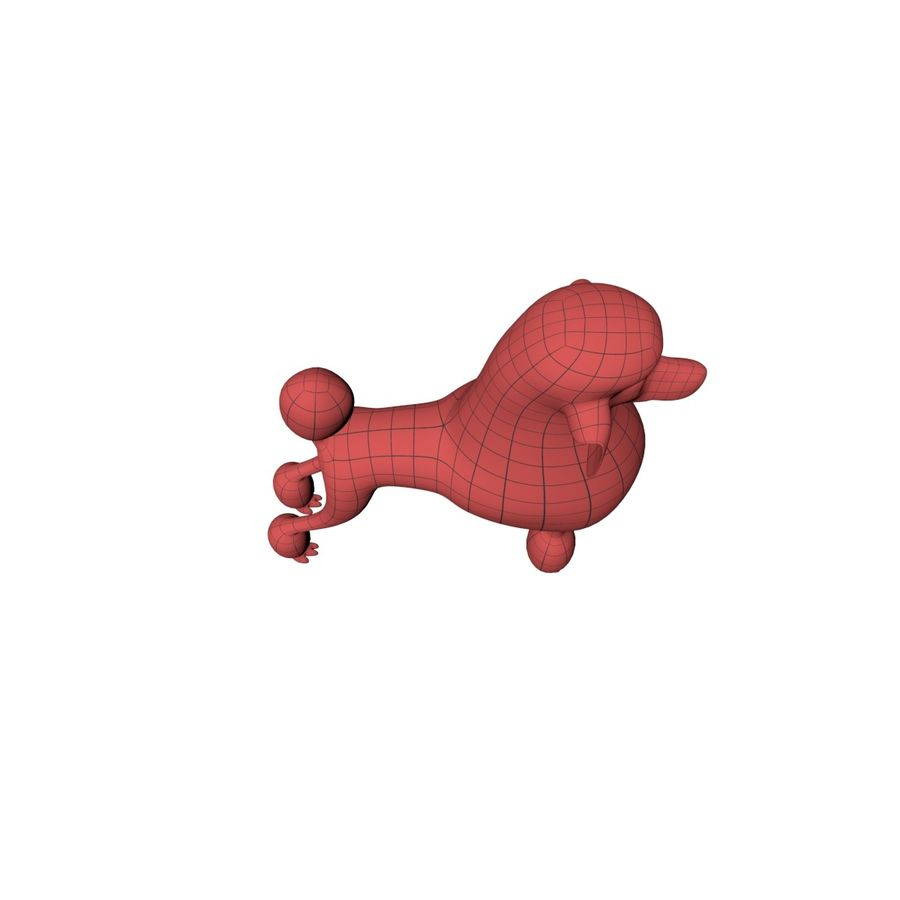 Poodle base mesh royalty-free 3d model - Preview no. 4