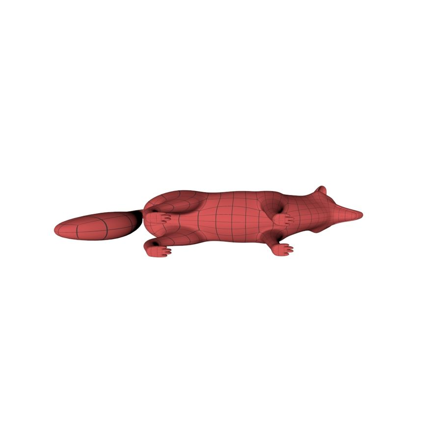 Fox base mesh royalty-free 3d model - Preview no. 6
