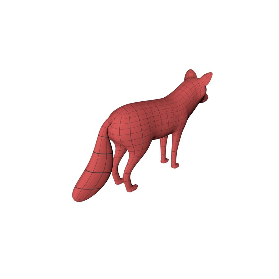 Fox base mesh royalty-free 3d model - Preview no. 7