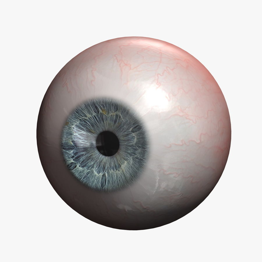 Menschliches Auge royalty-free 3d model - Preview no. 1