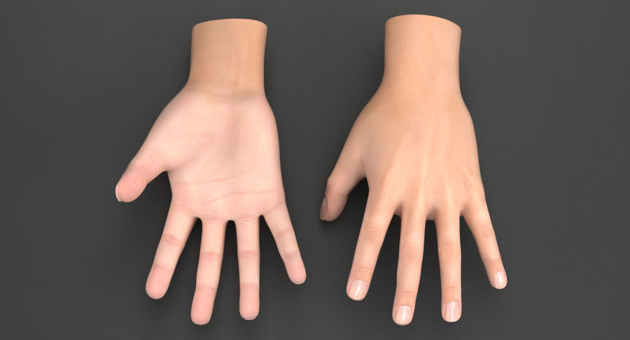Realistic Hand royalty-free 3d model - Preview no. 3