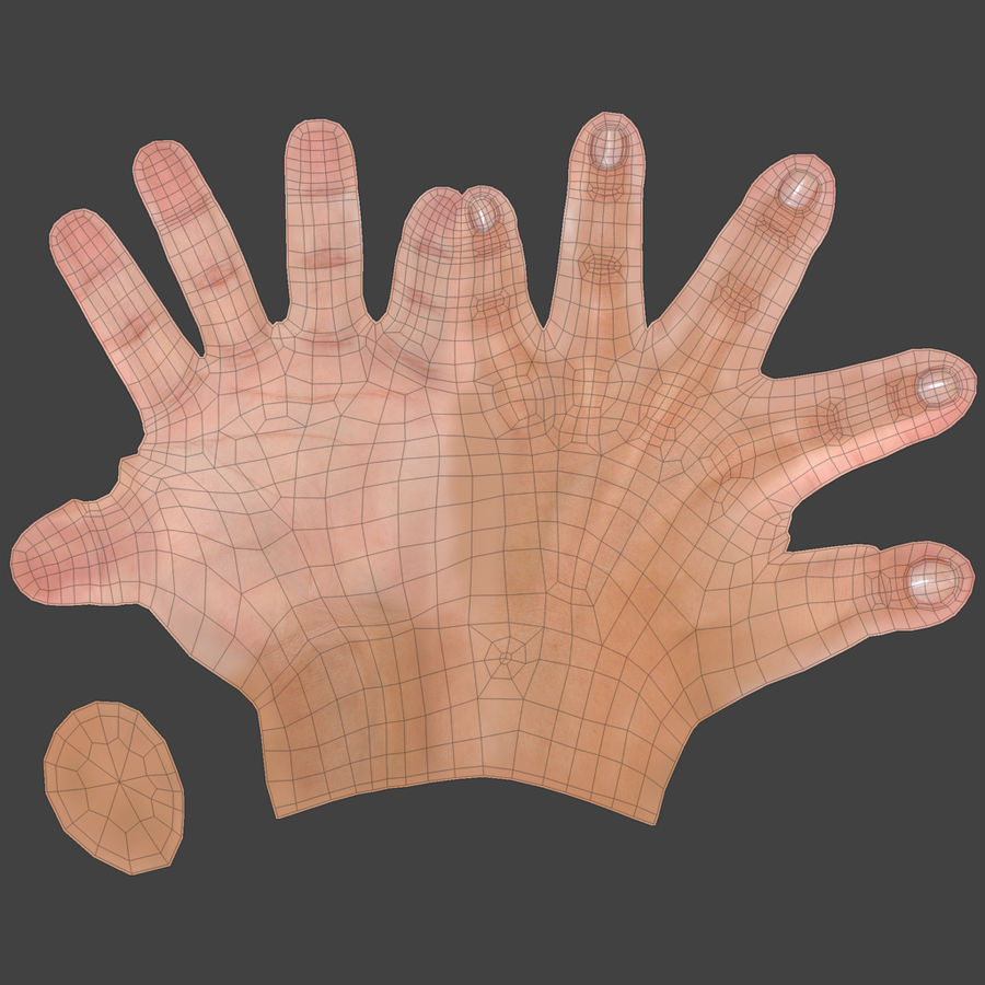 Realistic Hand royalty-free 3d model - Preview no. 5