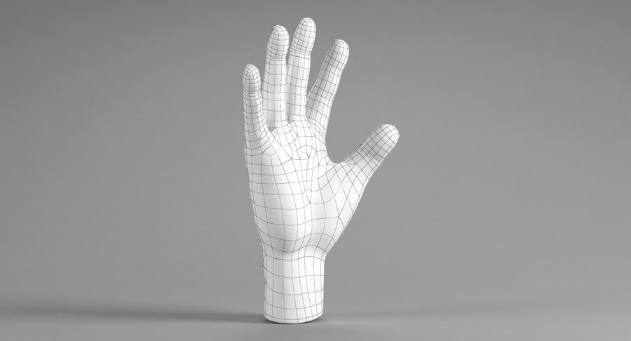 Realistic Hand royalty-free 3d model - Preview no. 11